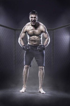 violence in sports: Excited MMA fighter in a cage shouting loud