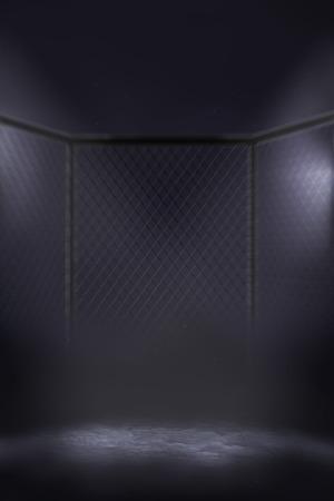 MMA cage arena under spotlights in fog