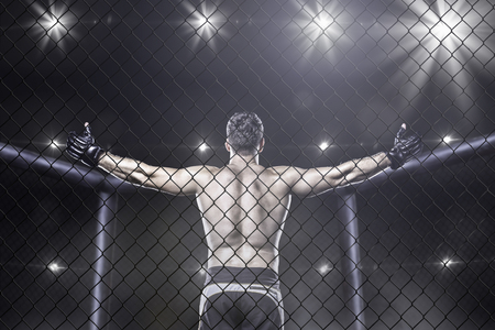 cages: Mma fighter in cage celebrating win, view from behind Stock Photo