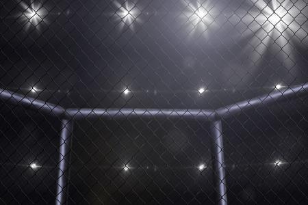 peleando: vacío mma campo de vista lateral bajo luces