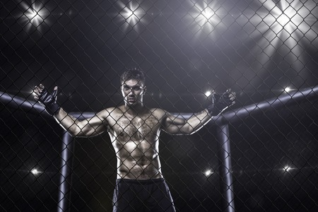 cages: fighter in mma cage arena front view Stock Photo
