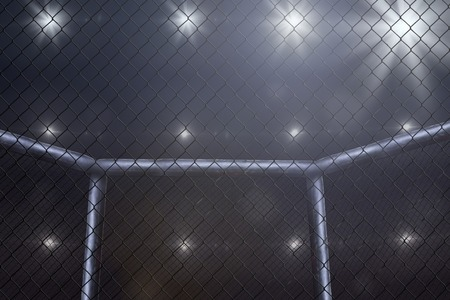 Empty mma arena side view under lights. Not blurred. Stock Photo