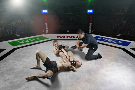 referee is stopping mma fight after the submission move