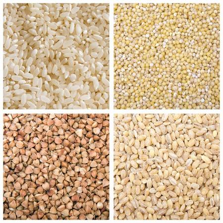 rice barley buckwheat millet photo