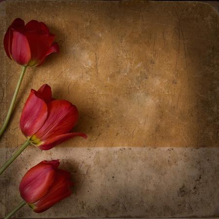unique: vintage flower background