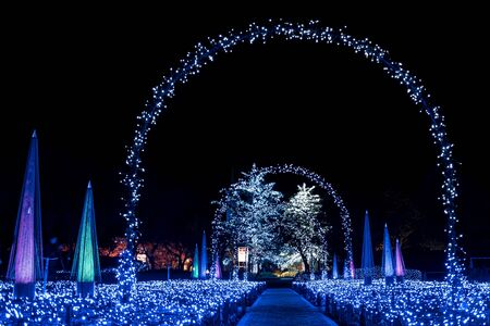 light show: Amazing light arch during winter illumination Editorial