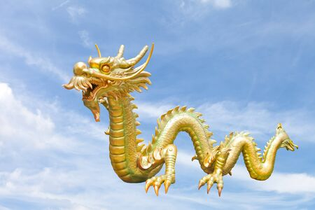 Dragon Fly photo