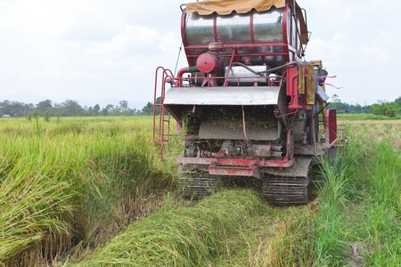 Harvest Vehicle on rice field, Thailand photo