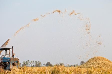 granger: Harvest Vehicle on rice field, Thailand Stock Photo