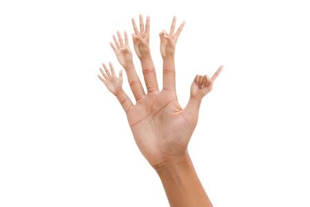 five objects: Mano con 1-5 dita numero, isolato su bianco