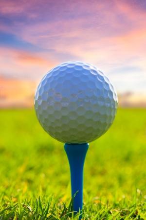 golf course: Golf ball on tee  Green grass