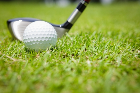 Golf club and ball in green grass Stock Photo