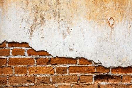 mattoncini: Vecchio muro di mattoni come sfondo