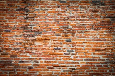 brique: Vieux mur de briques