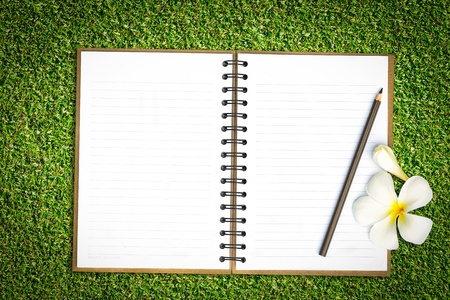 Notebook in green grass with frangipani flower photo