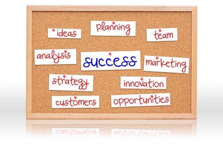 writing materials: The cork board with Success planning on white background Stock Photo