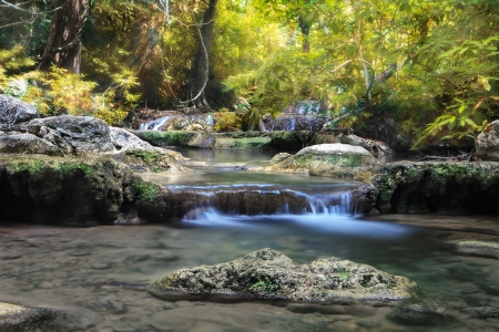 boil water: Mountain stream among the mossy stones