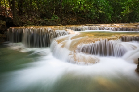 exotic plant: Deep forest Waterfall in Kanchanaburi, Thailand