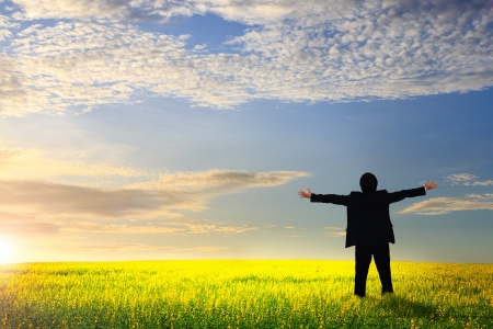 Businessman standing on a meadow with raised hands and looking to a horizon photo