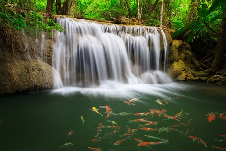 Thailand waterfall in Kanjanaburi  Huay Mae Kamin Stock Photo - 17198303