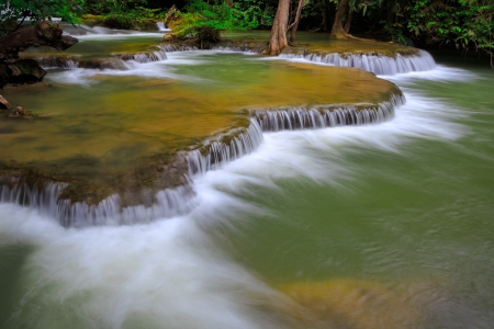 waterscape: Mountain stream among the mossy stones