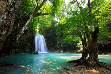 Deep forest Waterfall in Kanchanaburi, Thailand Stock Photo - 23330889