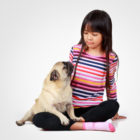 Little asian girl with her little pug, Isolated on grey background photo