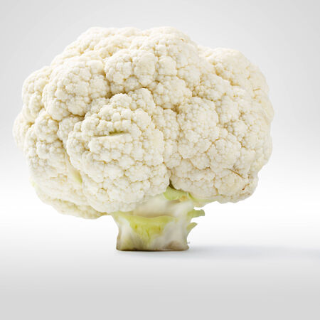 coliflor: Coliflor parecer un árbol, aislado sobre fondo gris