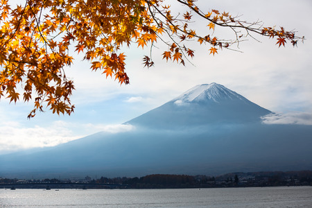 Fujisan in autumn photo