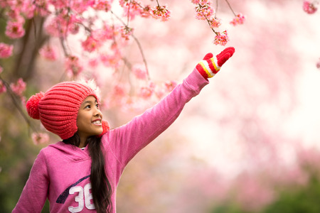 Little asian girl with Wild Himalayan Cherry, Outdoor portait photo