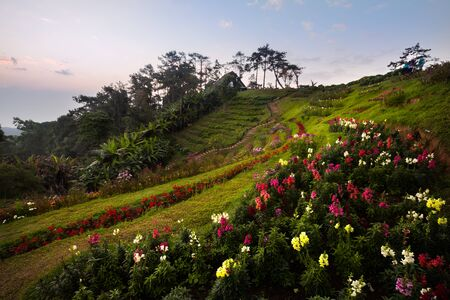 nam: Huai Nam Dang National Park, Chiang Mai, Thailand Stock Photo