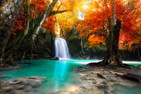 landscape: 深林瀑布 版權商用圖片
