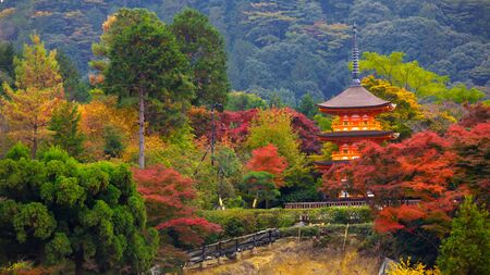 twentysomething: Kiyomizu-dera in autumn season,The leave change color of red castle in japan Editorial