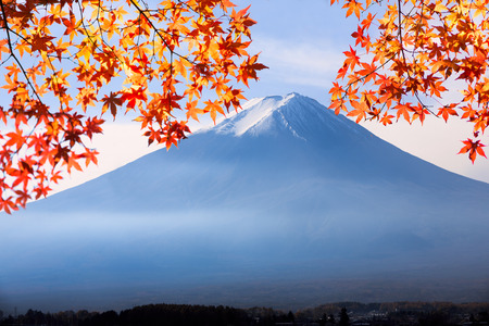 fujisan: fujisan with autumn maple leaf Stock Photo