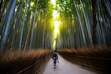 The bamboo groves of Arashiyama , just on the outskirts of Kyoto, Japan.