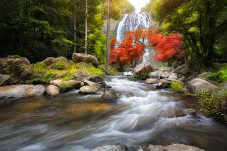 yellow trees: Waterfall in the autumn Stock Photo