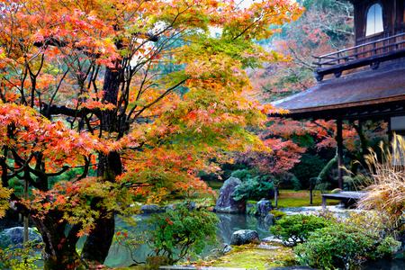 Jardín japonés en la estación del otoño, templo Ginkakuji, Kyoto Japón Foto de archivo
