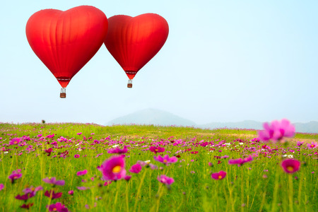 campo de flores: La forma del coraz�n en globo volando sobre la flor present� Foto de archivo