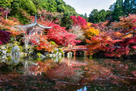Parque del otoño en Daigoji Temple, Kyoto Japón