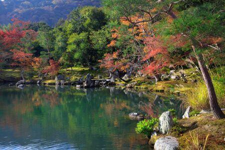 momiji: Zen garden of the tenryu-ji temple, Arashiyama Kyoto Japan
