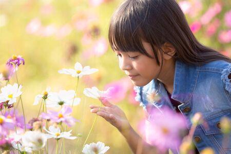 小さなアジアの女の子コスモス花畑