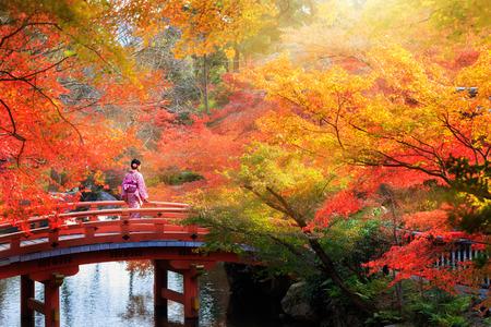 japon: Pont de bois dans le parc de l'automne, le Japon