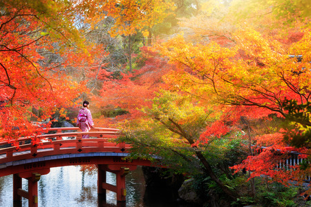 Wooden bridge in the autumn park, Japan 免版税图像