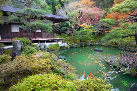 fish water: Japanese Garden in Ginkakuji Temple, Kyoto Japan Stock Photo