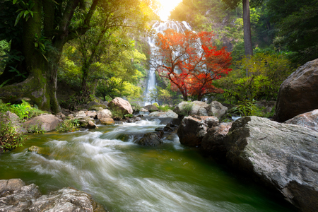 Mountain stream and Waterfall in the autumn Stock Photo