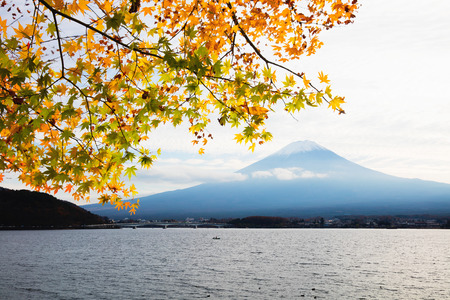 Mt fuji with autumn foliage at lake kawaguchi, Japan Stock Photo