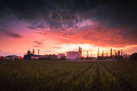 Petrochemical plant (Oil refinery) industry Stock Photo