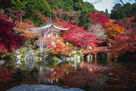 Autumn park in Daigoji Temple, Kyoto Japan