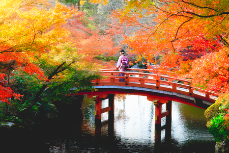 Female traveler standing at wooden bridge in the autumn park, Japan Stok Fotoğraf