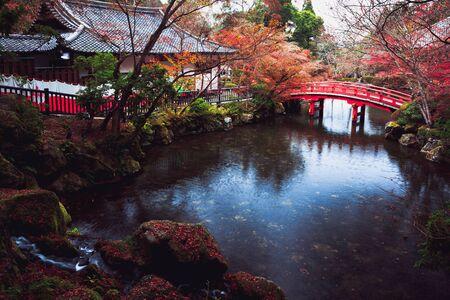 Wooden bridge in the pond, Autumn park